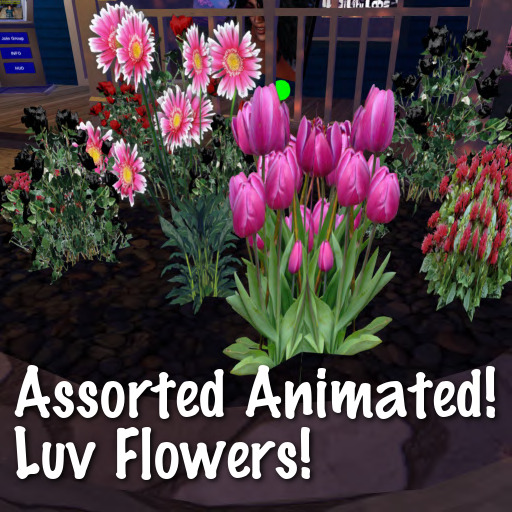Image Luv-Flowers---Assorted---Animated---4-materials